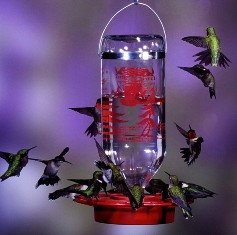 best32 - Best 1 32oz.  Hummingbird Feeder