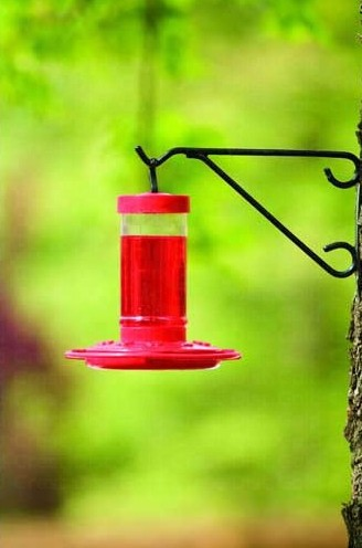 FN3051 - First Nature 16 oz Hummingbird Feeder