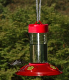 SE6018 - Dr. JB's 16 oz Clean Hummingbird Feeder (All Red Feeder w/Yellow Flowers)