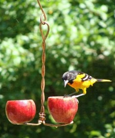 sehhlbap - Love Birds Fruit Apple Copper Bird Feeder