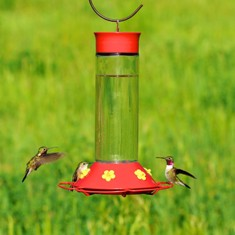 pp209B - Perky Pet 209 Our Best 30oz. Hummingbird Feeder
