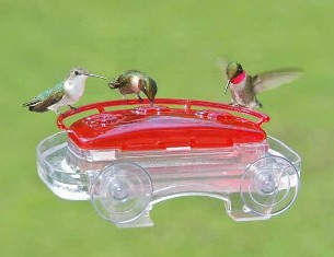 ASPECTS407 - Jewel Box Window Hummingbird Feeder