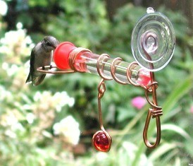sehhwwh1 - Single Glass Test Tube Window Wonder Hummingbird Feeder